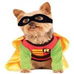 unique dog costume